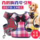 BIG DOG HARNESS WITH RING AND GRIPPER